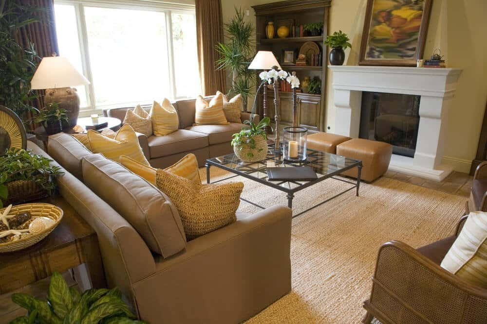 How Often Should You Clean Your Carpet (in Colorado)?