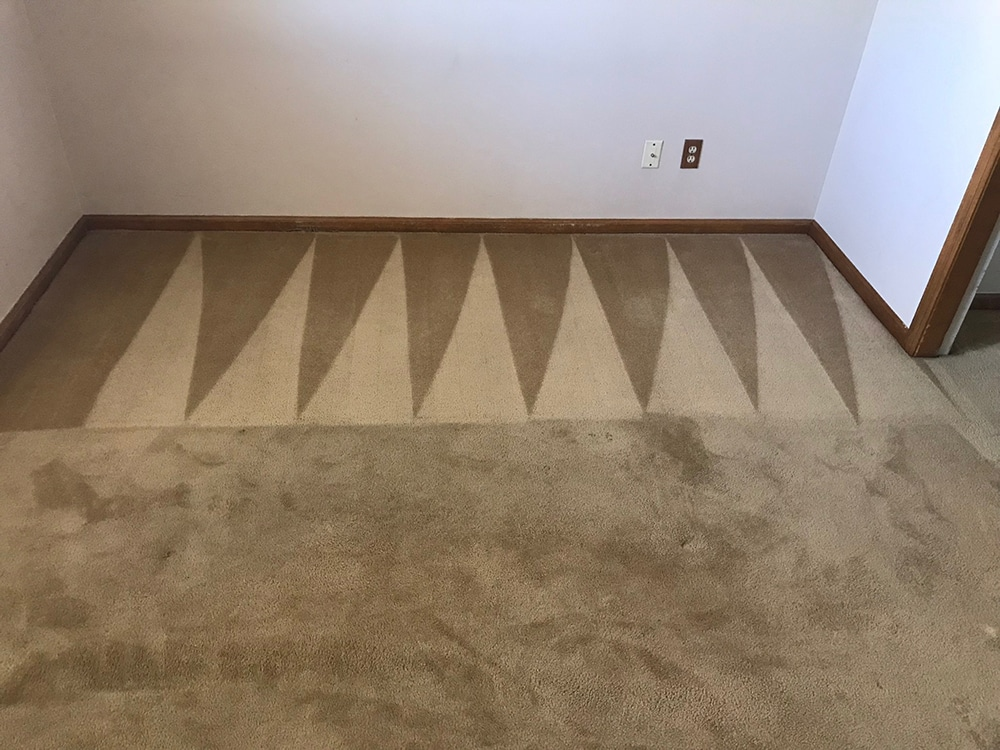 Carpet Cleaning Before and After Fort Collins Colorado