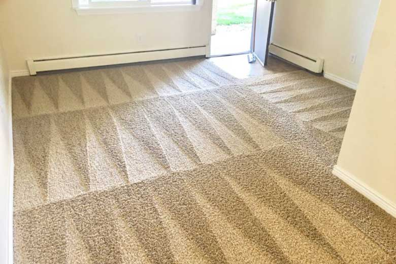 gallery-Carpet-Cleaning-Fort-Collins-Best-Carpet-Cleaning-Company