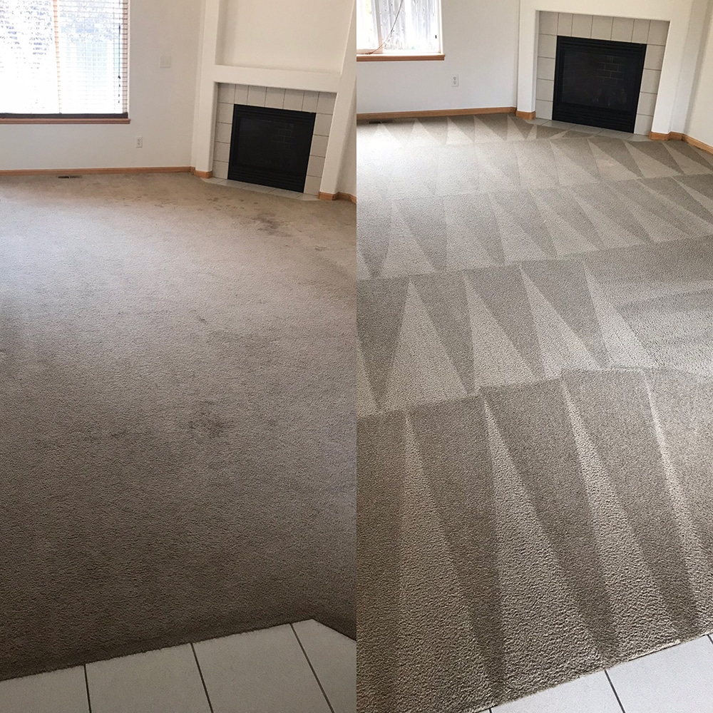 Carpet Cleaning Living Room Fort Collins Colorado